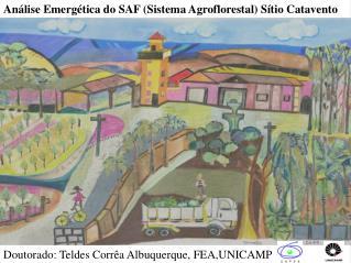 Análise Emergética do SAF (Sistema Agroflorestal) Sítio Catavento