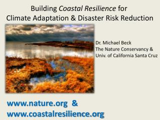 www.nature.org  &   www.coastalresilience.org