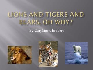Lions and Tigers and Bears, Oh Why?