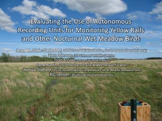 Evaluating the Use of Autonomous Recording Units for Monitoring Yellow Rails and Other Nocturnal Wet Meadow Birds