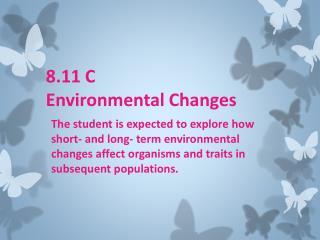 8.11 C  Environmental Changes