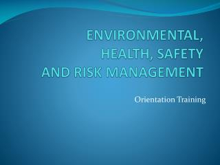 ENVIRONMENTAL,  HEALTH, SAFETY  AND RISK MANAGEMENT