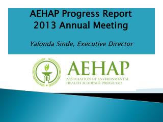 AEHAP Progress Report 2013 Annual  Meeting Yalonda Sinde,  Executive  Director