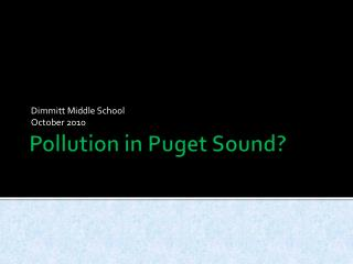Pollution in Puget Sound?