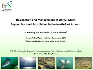 Designation and Management of OSPAR MPAs  Beyond National Jurisdiction in the North-East Atlantic
