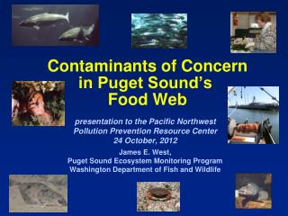 Contaminants of Concern in Puget Sound�s  Food Web