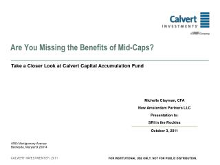 Are You Missing the Benefits of Mid-Caps?