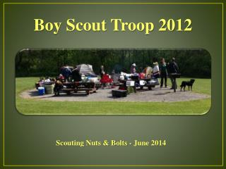 Boy Scout Troop 2012