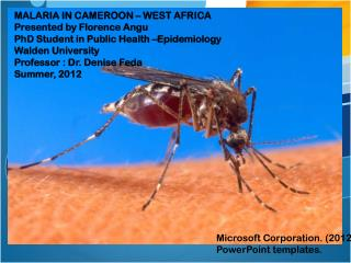MALARIA IN CAMEROON – WEST AFRICA Presented by Florence Angu PhD Student in Public Health –Epidemiology Walden Universi