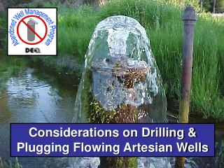 flowing artesian wells