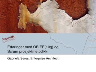 Erfaringer med OBIEE(10g ) og  Scrum prosjektmetodikk