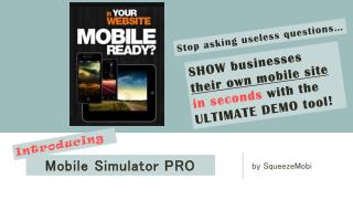Mobile Simulator PRO