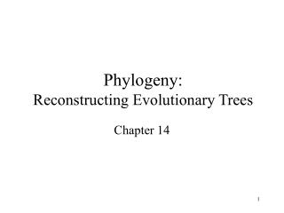 phylogeny: reconstructing evolutionary trees