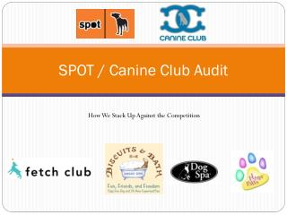 SPOT / Canine Club  Audit