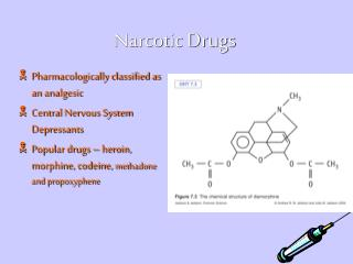drugs : organization by pharmacology
