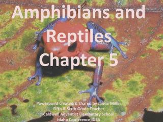 amphibians and reptiles chapter 5   powerpoint created  shared by jamie miller fifth  sixth grade teacher caldwell adven
