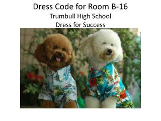 Dress Code for Room B-16 Trumbull High School Dress for Success