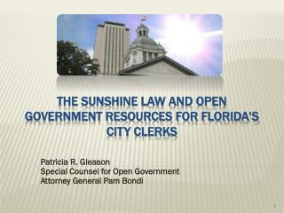 The Sunshine law and open government resources for Florida's city clerks