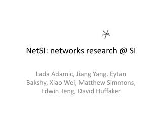 NetSI : networks research @ SI