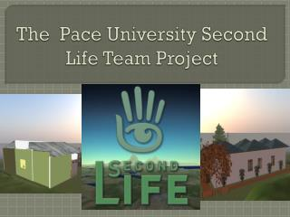 The  Pace University Second Life Team Project
