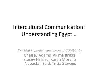 Intercultural Communication: Understanding Egypt�