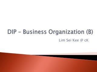 DIP – Business  Organization (B)