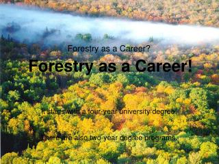 forestry as a career