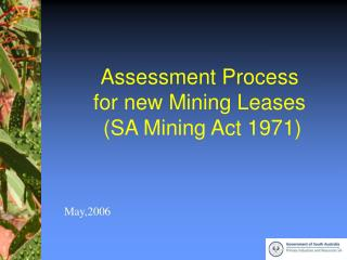assessment process for new mining leases sa mining act 1971