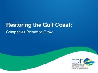 Restoring the Gulf Coast: