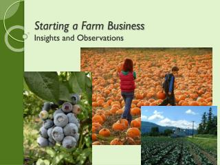 Starting a Farm Business Insights and Observations
