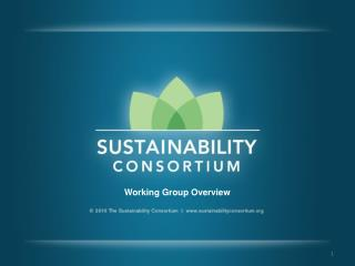 Working Group Overview