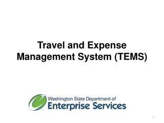 Travel and Expense Management System (TEMS)
