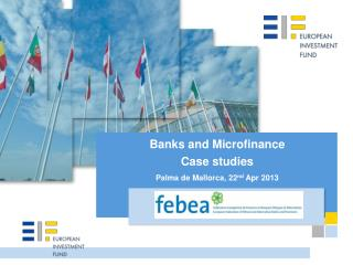 Banks and Microfinance Case  studies Palma de Mallorca, 22 nd  Apr 2013