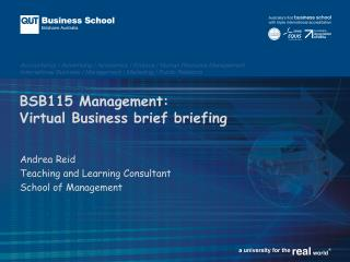 BSB115 Management: Virtual Business brief briefing