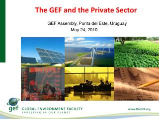 The  GEF  and the Private Sector