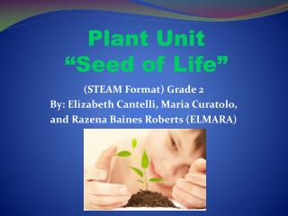 "Plant Unit  ""Seed of Life"""