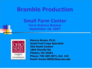 bramble production  small farm center farm science review  september 18, 2007