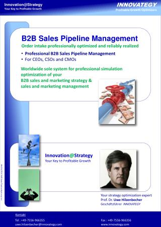Professional B2B Sales Pipeline Management For  CEOs, CSOs  and  CMOs