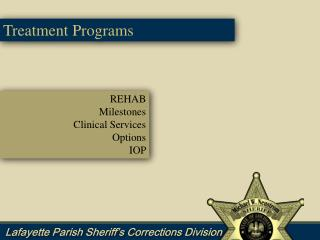 REHAB Milestones Clinical Services Options IOP