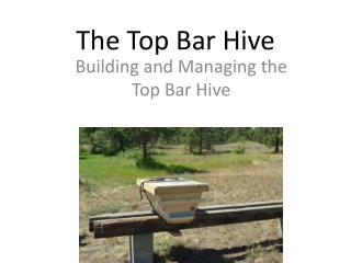 The Top Bar Hive