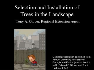 Selection and Installation of Trees in the Landscape