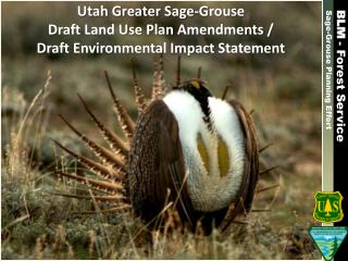 Utah Greater Sage-Grouse  Draft Land Use Plan Amendments / Draft Environmental Impact Statement
