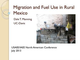 Migration and Fuel Use in Rural Mexico
