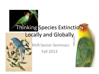 Thinking  Species Extinctio n  Locally and Globally