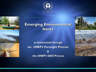 as determined through  the  U NEP's Foresight Process  &   the UNEP's GEO Process