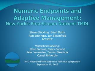 Numeric Endpoints and Adaptive Management: New York's First Stream Nutrient TMDL