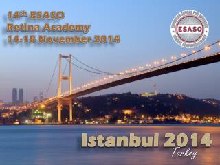 14 th  ESASO  Retina  Academy 14-15  November  2014