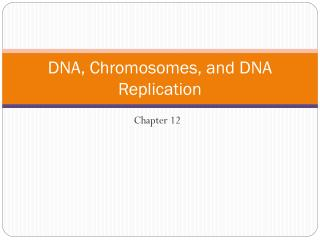 DNA, Chromosomes, and DNA Replication