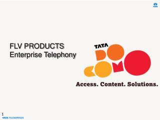 FLV PRODUCTS Enterprise Telephony