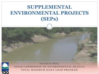 SUPPLEMENTAL  ENVIRONMENTAL PROJECTS  (SEPs)